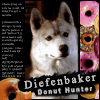 ride_4ever: (Diefenbaker Donut Hunter)