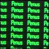 schmerica: ([arrested development] penus)