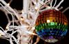 alee_grrl: Rainbow colored disco ball handing in front of white lights (christmas)