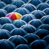 jadesfire: One colourful umbrella amongst many black ones. (Umbrella)