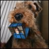 okora: (Кубик Рубика)