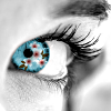 mysterie: Greyscale close up of a woman's left eye, the iris is sky blue with an overlay of sakura blossoms (Sakura Blue eyes)