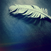 derry: (feather)