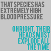 aivix: (Head Explode)