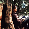 darkly_ironic: (sam leaning on tree)