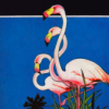 newredshoes: illustration, three flamingos in profile (<3 | important flamingos)
