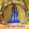 cat_77: Stargate (dial home)