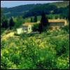 ostro_goth: (z -- Villa Rustica)