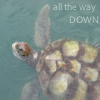 "kareila: a sea turtle with the text ""all the way DOWN"" (turtle)"