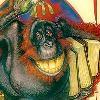rabidsamfan: (arboreal ape)