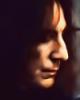 hanaheart: Snape (Default)