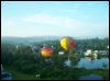 bloomingpol: Looking back on a parade of hot air balloons (Default)