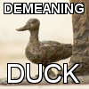 sunnymodffa: do you feel demeaned by ducks? (Demeaning Duck)