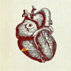 polyamorous: (heart)