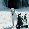 starkbastard: (Ghost running)