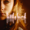 greyjoy: (asoiaf - sansa - little bird)