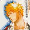 furiosity: (ichigo portrait)