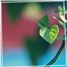 sara_merry99: (Love Little Leaf)