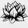 amberdrake: Drake's lotus tattoo, drawn by Faun (imagine there's no heaven)