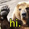 "sholio: bear raising paw and text that says ""hi"" (Bear)"