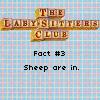 baseballchica03: Sheep are in. (bsc - sheep)