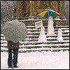 rosiphelee: (Snow)