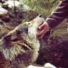 rootsofthestories: (misc: we find friends)