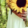 hickumu: (Sunflower Funtimes)