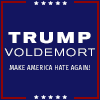 phineasfrogg: text: 'Trump/Voldemort - Make America Hate Again!' (trump/voldemort)