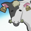 backtothelight: The cow from the first episode of Chobits. (Chobits Cow)