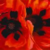 kore: (Oriental Poppies by Georgia O'Keeffe (19)