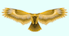 makesthings: (golden hawk)
