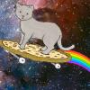 apotheocrisy: Photo of a cat riding a pizza skateboard with a rainbow trail (kitty)