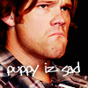 dina: (JP: puppy iz sad)