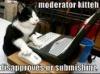 skinners_box: (mod kitty)