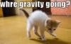 skinners_box: (gravity)
