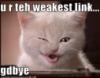 skinners_box: (weakest link)