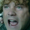 tinidril: photo of Samwise yelling (angry)