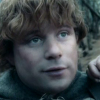 tinidril: photo of Samwise looking brave (brave, amused, hopeful)