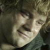tinidril: photo of Samwise with loving smile (love, caring, admiration)
