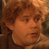 tinidril: photo of Samwise looking confused (confused, what?, huh?)