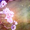 carovdh: (bloom)