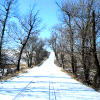 chanter_greenie: a house and road blanketed in snow (Wisconsin winter: buried in snay)