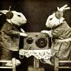 wanderamaranth: (Music: Rabbit Records)