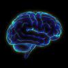 dancefloorlandmine: Blue image of brain (Brain)