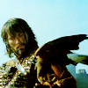 andrealyn: (ka: a man and his hawk)