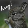 remindmeofthe: (bunny!)