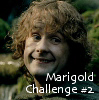 piplover: (challenge)