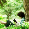 starspray: Frodo reading beneath a tree (Frodo Reading)