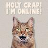 skaldadottir: Holy Crap! I'm Online! (who let this happen)